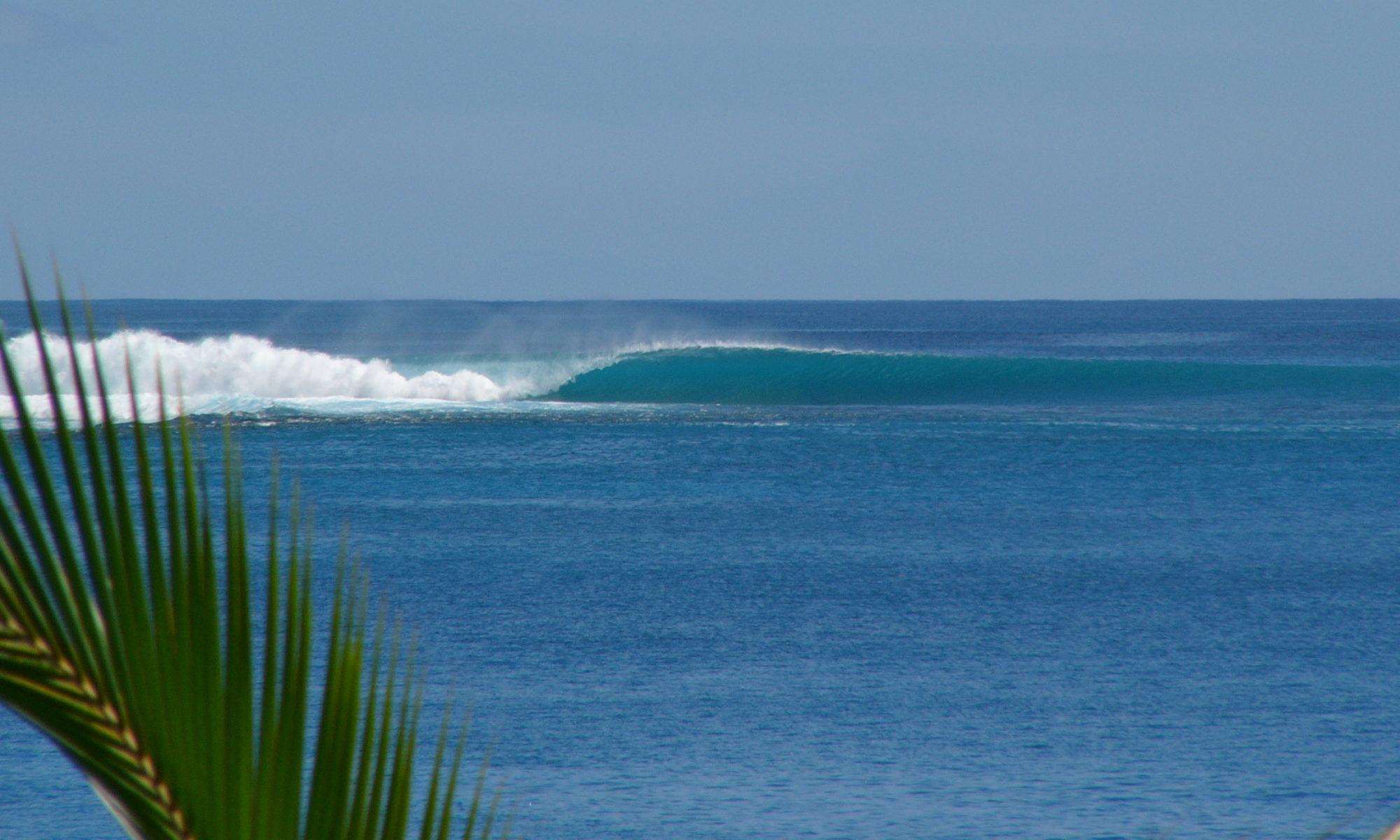Surf7873
